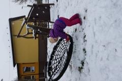 První sníh na zahradě - Vrabčáci
