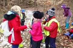 Učíme se v lese - Žabičky