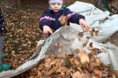 Uklízíme na zahradě - Vrabčáci